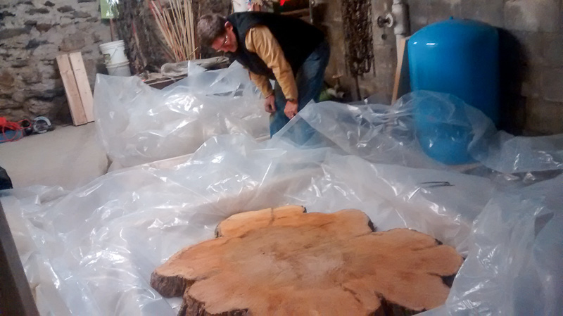 Prof. Hank Art inpsects the larger of the two maple slabs before adding the Pentacryl wood preservative. Photo by Bradley Wakoff
