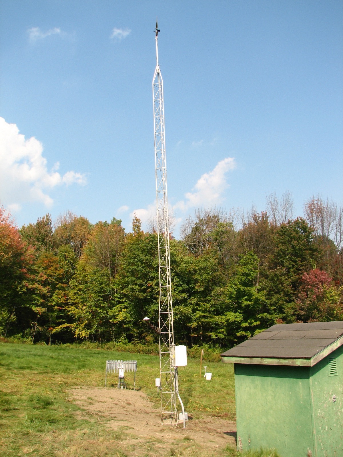 Station 1 in Hopkins Memorial Forest